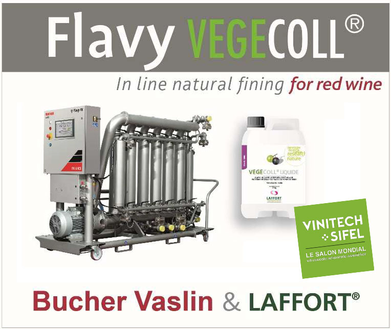 flavy vegecoll bucher laffort innovation vinitech